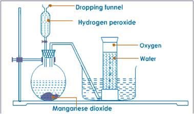 Oxygen Production